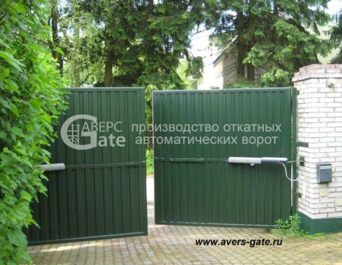 Распашные ворота Дибуны
